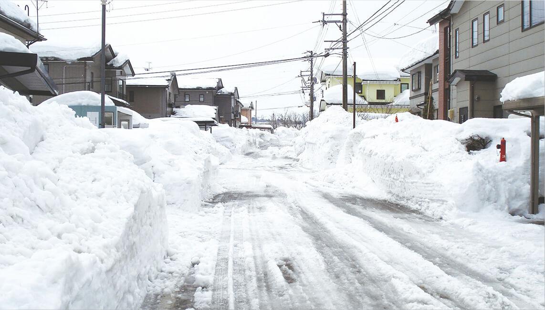 雪と都市・環境